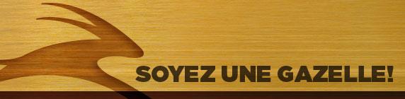 Appel de candidatures du 24 février au 28 mars 2014 - Soyez une gazelle!